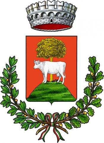 logo comune miane